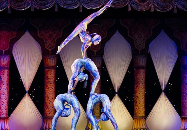 Photo représentant une gymnaste - Flexibilité CDI