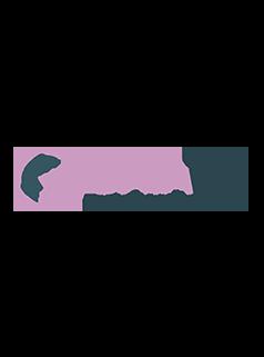 Base visuel homepage K&D logo Datatim